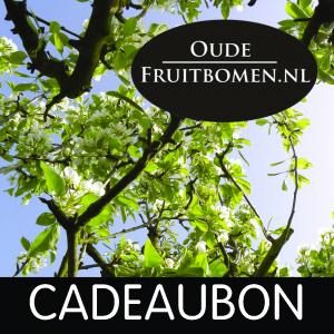 cadeaubon_oudefruitbomen